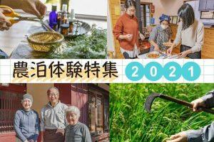 202104 nohakutaiken_SJ_203_pc@2x_